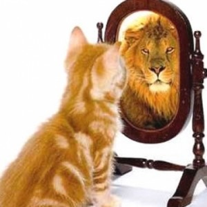 boost-self-confidence-cat-to-lion